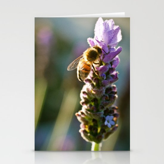 A Visitor Stationery Cards
