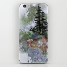 Walk to the Point iPhone & iPod Skin