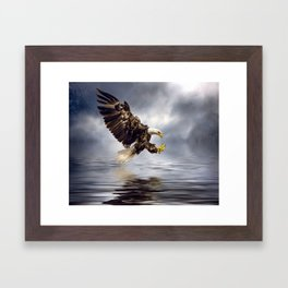 Bald Eagle swooping Framed Art Print