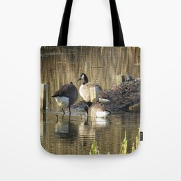 Ducks at John Heinz Wildlife Reguce Tote Bag