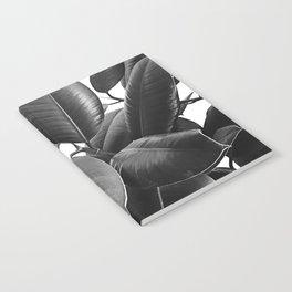 Ficus Elastica #23 #BlackAndWhite #foliage #decor #art #society6 Notebook