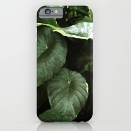 Retro Tropical Green Foliage Leaves iPhone Case