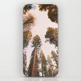 Sequoia Sunset iPhone Skin