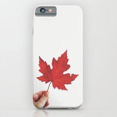 Beautiful imperfection iPhone 6s Slim Case