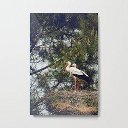 Silent Birds  Metal Print