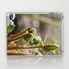 Young Ferns Laptop & iPad Skin