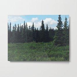 Alaska Forest Metal Print