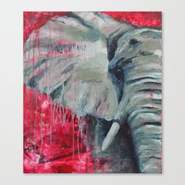 A Shade of Red Canvas Print