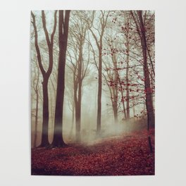 Late fall Forest in Fog Poster