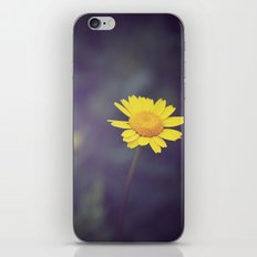 Miss Yellow Daisy iPhone & iPod Skin
