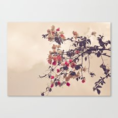 Dream of Flowers Canvas Print