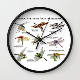 Dragonflies of North America Wall Clock