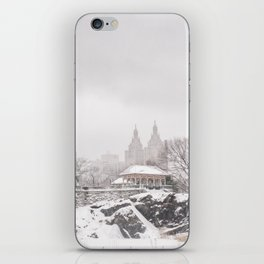 Central Park iPhone Skin