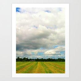 Irish Field II Art Print