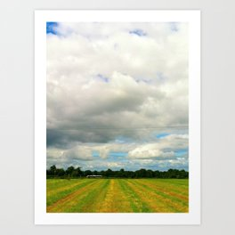 Irish Field II Art Print