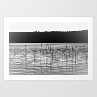 Little Grass Valley Lake Art Print