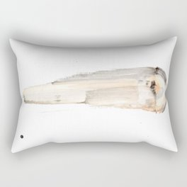 Comet - Functions of Space and Time Rectangular Pillow