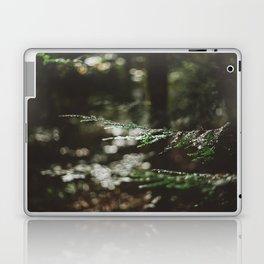Forest Dark, Forest Deep Laptop & iPad Skin