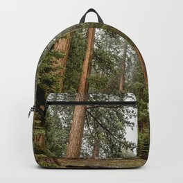 Sequoias in the Fog Backpack