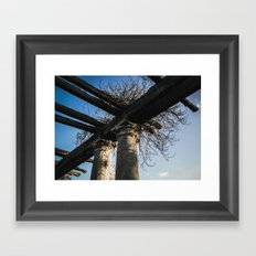 Columns Framed Art Print