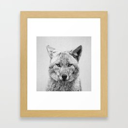 Coyote - Black & White Framed Art Print