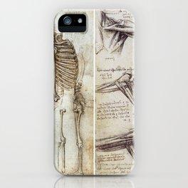 Anatomical Drawings - Leonardo Da Vinci iPhone Case
