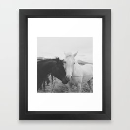 Horse Pair Framed Art Print