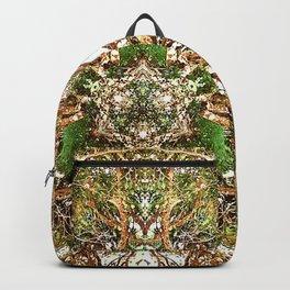 Source No 1 Backpack