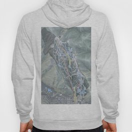 Aspen Mountain Resort Trail Map Hoody