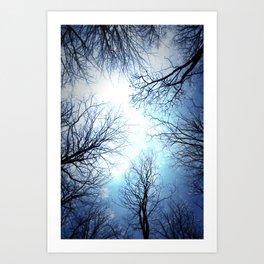 Black Trees Blue sky Art Print
