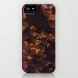 Eucalpytus Leaves II iPhone Case