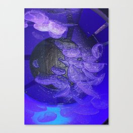 Acrylic Jelly Fish Canvas Print