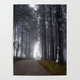 Misty forest road with orbs Poster