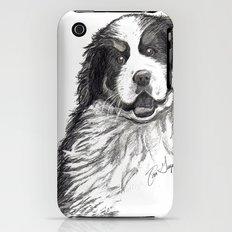 Bernese Mountain Dog iPhone (3g, 3gs) Slim Case