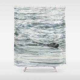 Harbor Seal, No. 2 Shower Curtain