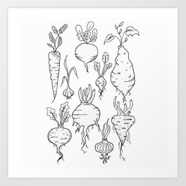 Root Vegetable Study Illustration Art Print