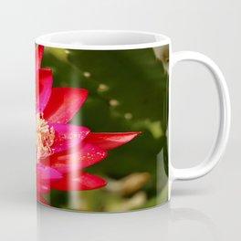 Cacti Blossom Coffee Mug