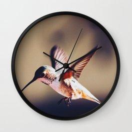 A hungry hummer Wall Clock