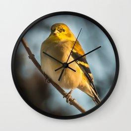 Goldfinch in Winter Wall Clock