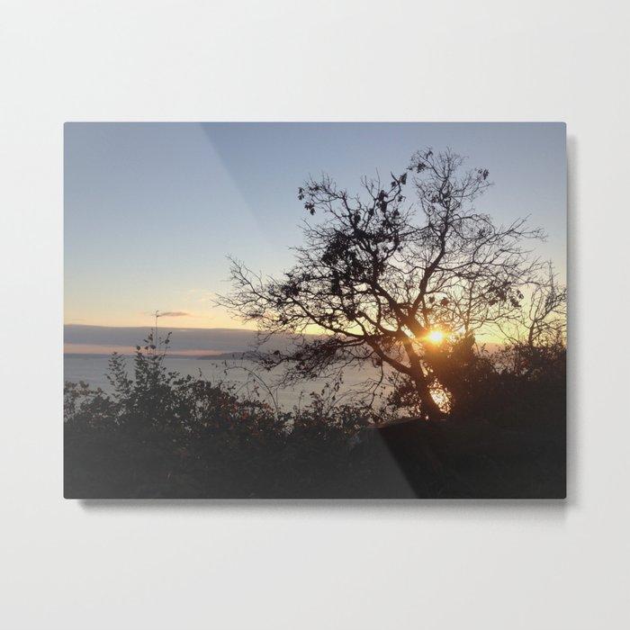 Edge of Seattle tree sunset Metal Print