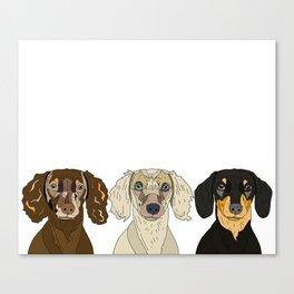 Triple Doxies Canvas Print
