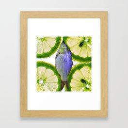 Lime Fish Framed Art Print