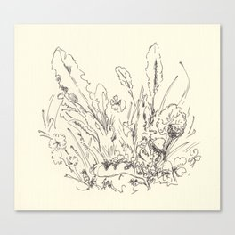 Weeds Rough Sketch Canvas Print