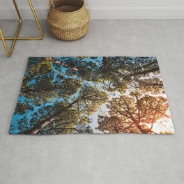 Trees and sky in sunlight- forest landscape - nature photography Rug