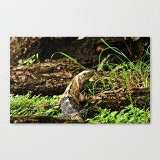 Hi there, I'm a lizard! Canvas Print