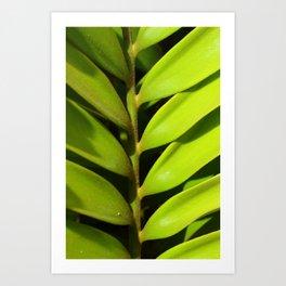 Vegetal balance Art Print