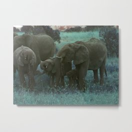 African Elephant Family Drinking in Blue Metal Print