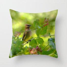 Cedarwaxwing in honeysuckle Throw Pillow