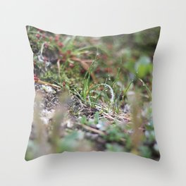 Alaskan Dew Throw Pillow