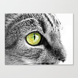 Emerald Cat Eyes in Black and white Canvas Print